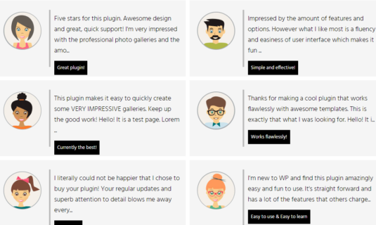 WordPress Gallery - Post Feed Description